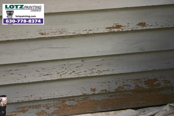 Exterior Siding Primed with Clear Primer